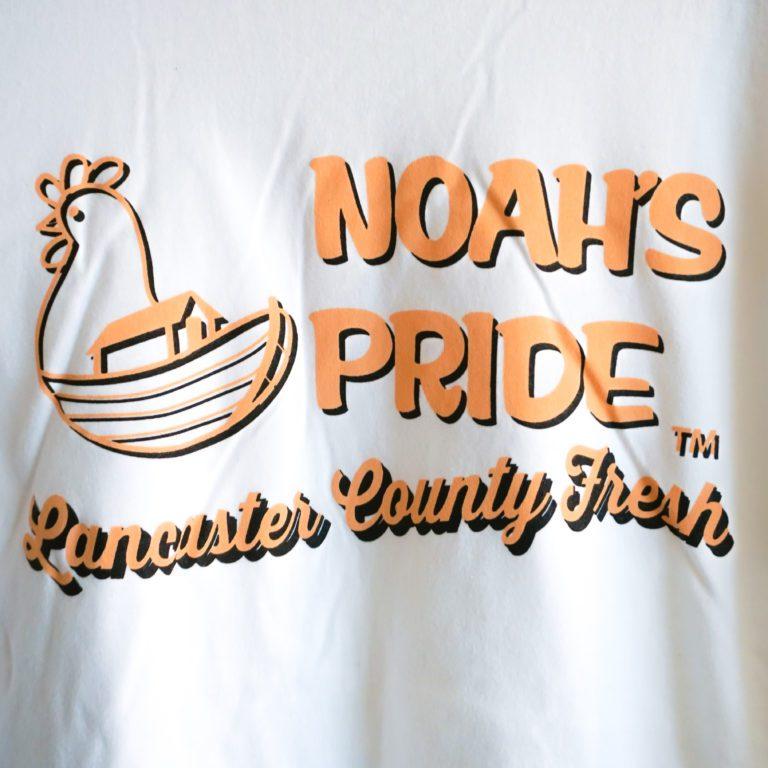 Noah's Pride Tee Detail