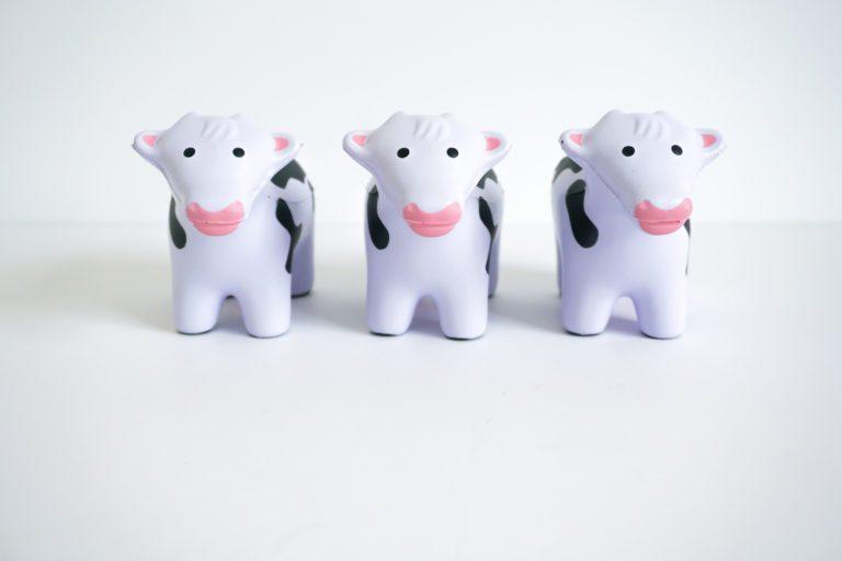Stress Cows