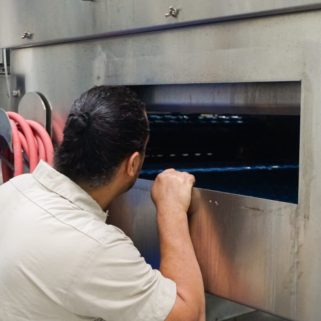 man looking into processing equipment