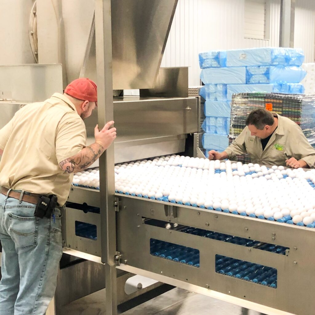 two men inspecting and checking conveyor belts