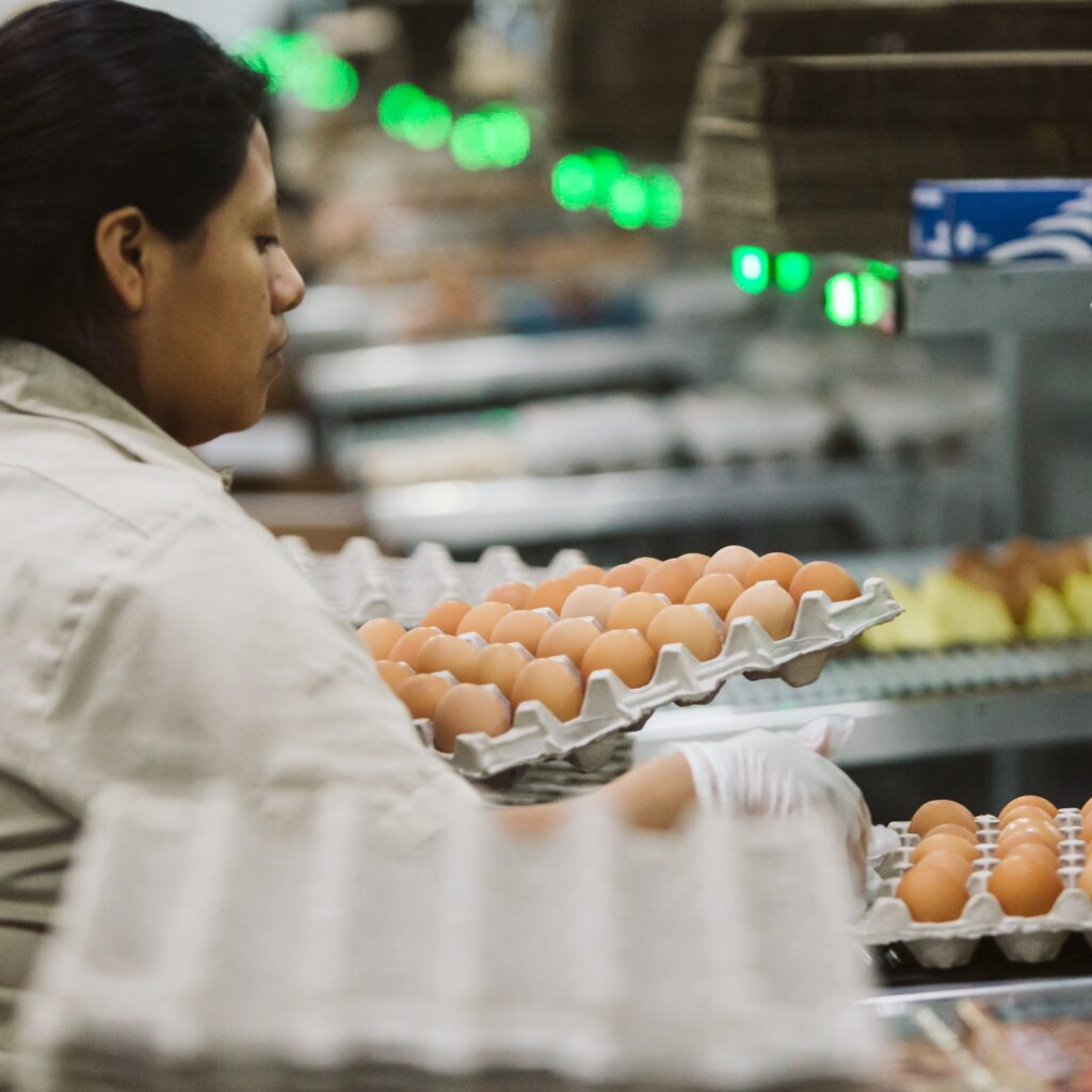 woman packing egg flat in processing facility